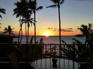 Paki Maui 207