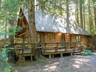 Mt. Baker Rim Cabin #43