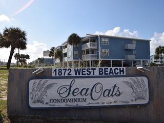 Sea Oats E104