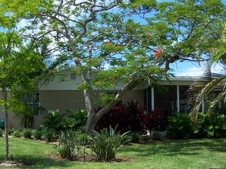Palm Cottage #54605