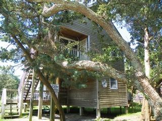 Grant III (3-Bedroom Home)