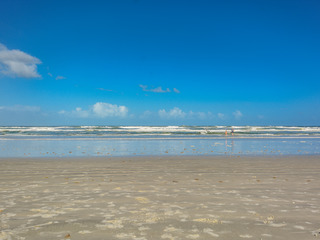 OW3-506 Ocean Walk