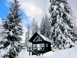 Grinning Grizzly (Cabin #2): Ski-In/Out Cabin w/Prvt Hot Tub