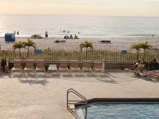 Beach Palms 405