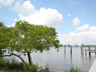 Seagrape Bay #505