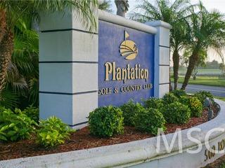 Plantation 04