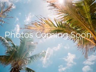 TR_557R Champions Breeze