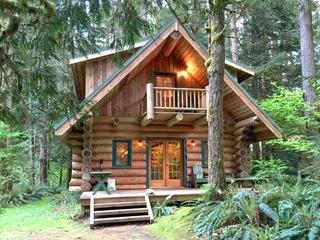 10SL- Real Log Cabin- WiFi- SLEEPS-8